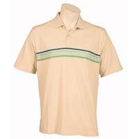 Ashworth St.Ives Polo Shirt